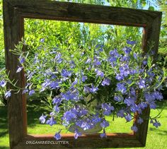 s 25 awesome things you didn t know you could do with old picture frames, crafts, repurposing upcycling, Showcase a potted plant or container garden