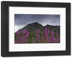 Poster Prints, Framed Prints, Framed Wall, Colour Images, Natural Beauty, Fine Art Prints, Landscapes, Wall Art, Artwork