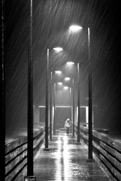 "Rainstorm -The rain came down upon my head - Unsheltered. And the wind rendered me mad and deaf and blind.""  Edgar Allen Poe"
