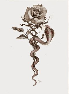 dragon tattoo - Google Search