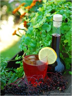 Elderberry syrup for winter colds