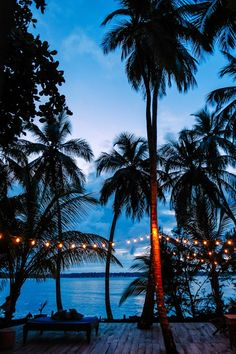 The Firefly in Bocas Del Toro, Panama - an eco-friendly Caribbean bed & breakfast on the water Places To Travel, Places To See, Travel Destinations, Dream Vacations, Vacation Spots, Bastimentos Island, Peru Ecuador, Magic Places, House Of Turquoise