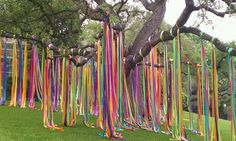 San Antonio yard decorated for fiesta