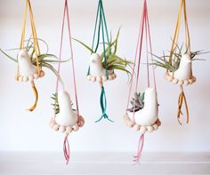 DIY nesting bird hanging planter