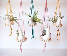 DIY nesting bird hanging planter