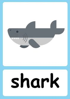 English Activities For Kids, Animal Activities For Kids, English Lessons For Kids, Kids English, Infant Activities, Preschool Activities, Ingles Kids, Baby Flash Cards, Flashcards For Kids
