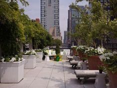 english garden design sense outdoor terrace design