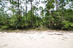 407 Best Homes For Sale In Panama City Florida Images In 2019