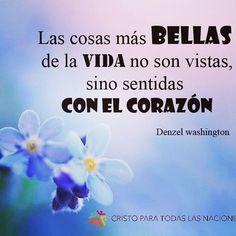 #cosasbellas