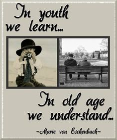 youth we learn... in age we understand. Surely wisdom is with the elderly, and understanding with the grey of hair!