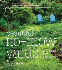 Low-Maintenance Landscaping: Replace Your Lawn with Grass Alternatives - Green Homes - Natural Home & Garden