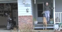 This man takes his dog for a walk, and sometimes people will stare and laugh, but if they knew the whole story, it would be different... This kind man didn't give up on his paraplegic dog when his doctor had an accident!  Thankfully his owner loves him just like his own kid and the results aren't