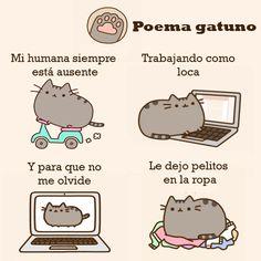 20 de febrero día internacional del gato. ¡feliz día!  #DiadelGato #20Febrero #gatos #PoemaGatuno #felinos