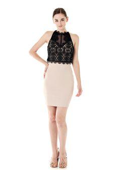LIPSY チュールレースデザインドレス ブラック - MILLEPORTE/オンライン ブティック公式サイト