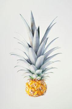 https://society6.com/product/pineapple-oqs_print?curator=grainofrice