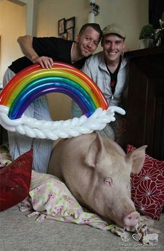 """Esther the wonder pig wishes everyone """"happy world pride"""""""