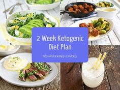 2 Week Ketogenic and Primal Diet Plan