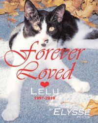 Book: Forever Loved  Book Cover: © photo by Elysse Poetis - courtesy of Von Der Alps Publishing Corporation CANADA  #ElyssePoetis  #VonDerAlpsPublishingCorporation #CANADA #USA #Amazon #AmazonBooks #Books #Author #Poet #Poetry #Stories  #Photographer #Artist