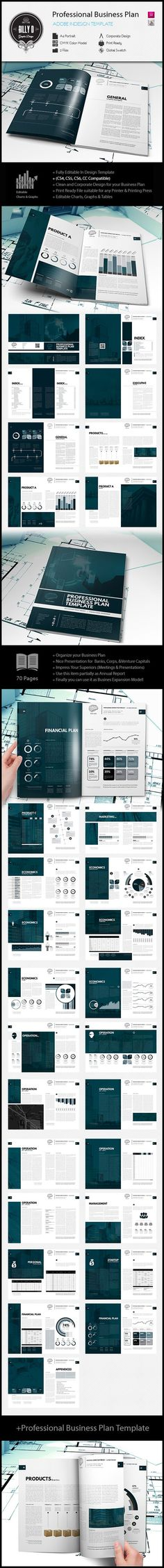 Professional Business Plan Template The business plan consists - company plan template