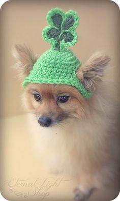 Pet St. Patrick's Day Beanie XSXL by EternalLightShop on Etsy, $12.00