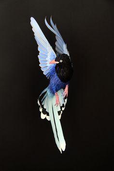 A artista Diana Herrera utiliza recortes, dobraduras e colagens para recriar aves em sua forma plena.
