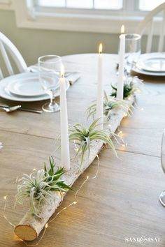 Tree Branch Centerpieces, Table Centerpieces, Table Decorations, Balcony Decoration, Diy Candle Holders, Diy Candles, Taper Candles, Modern Candle Holders, Candels