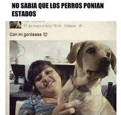 #humores #toquedehumor