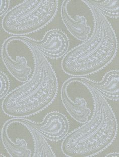 Cole and Son's Rajapur  is taken from the Contemporary Collection wallpaper collection.
