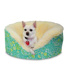 Look at this Green Harmony Pet Couch on #zulily today!