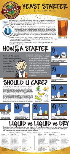 Yeast starter infographic. Craft beer. Homebrew.