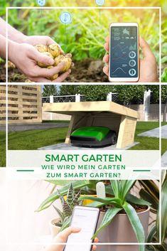 """Smart Garden: Nicht nur im Innenbereich kann Ihnen ein """"Smart Home"""" sehr hilfreich sein, auch im Garten können moderne Technologien Ihnen vieles erleichtern. Vom automatisierten Rasenroboter bis hin zu Pflanzensensoren, die einen Nährstoffmangel Ihrer Pflanzen messen können, der Smart Garten macht vieles möglich. Wie Sie Ihren Garten """"Smart"""" nachrüsten können und was Sie dabei beachten sollten, erklären wir in unserem Artikel! Smart Home, Home And Garden, House, Plants, Smart House, Home, Homes, Houses"""