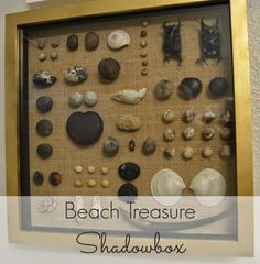 An easy and beautiful way to showcase all those beach treasures from vacations and special places!
