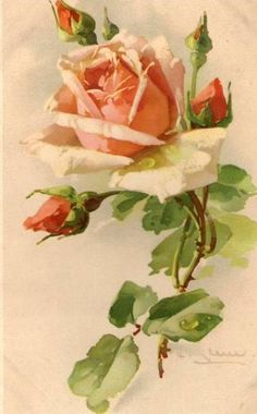 3 PRINT s FREE SHIP Love's Tokens Roses C Klein