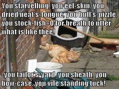 """""""You starvelling, you eel-skin, you dried neat's-tongue, you bull's-pizzle, you stock-fish–O for breath to utter what is like thee!-you tailor's-yard, you sheath, you bow-case, you vile standing tuck!"""" #Shakespeare #Insult #Cats #HenryIV"""