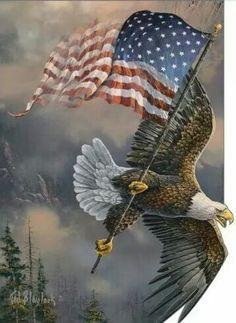 I am an American Patriotic. I love America. Love America or Leave it. Patriotic Pictures, Eagle Pictures, Eagle Images, Horse Pictures, Animal Gato, Mundo Animal, I Love America, God Bless America, Awesome America
