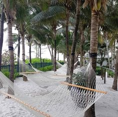 Our agenda for the day- kick back and relax. #grandbeachmiami #gbhmoments #hammocklife Photo by @katten._