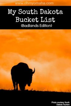 The ultimate list of things to do in South Dakota, particularly around The Badlands, including seeing parks, wildlife, and landmarks.
