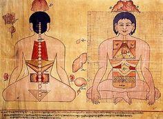 Old tibetan medicine painting