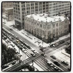 Broad and Vine - photo by @Andrew Mendelson