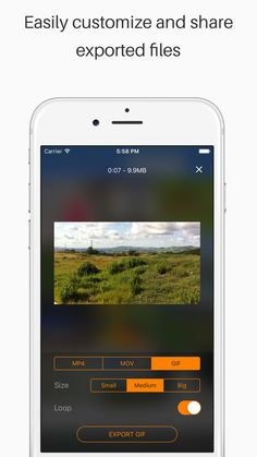 Live Share - Export Video and Live Photo to GIF, Movie & MP4, Transfer to Computer on the App Store