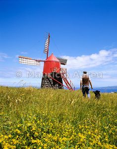 Traditional windmill in Faial, Azores, Portugal