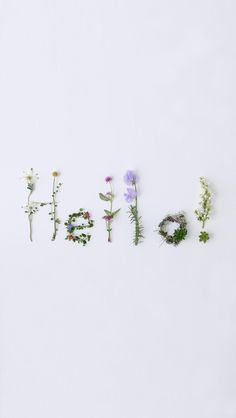 Flowery Wallpaper, Pastel Wallpaper, Love Wallpaper, Aesthetic Iphone Wallpaper, Wallpaper Backgrounds, Flower Words, Flower Quotes, Flower Art, Text Pictures