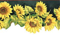 DIE CUT BRIGHTLY COLORED SUNFLOWER DEEP GREEN BACK COUNTRY Wallpaper BordeR Wall