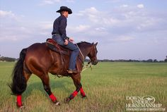 Training Tip: Train Your Horse on the Trail