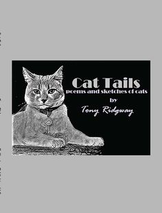 Tony Ridgway Publishes Second Book With Bellissima Publishing, LLC. South Africa's iTony Ridgway is more than a poet, he is also a cat whisperer! Book Of Poems, Cat Whisperer, Cat Sketch, Book Gifts, Large Prints, Cat Tails, Africa, Sketches, Cats