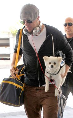 Channing Tatum's carry-on while flying? A puppy! Adorbs!