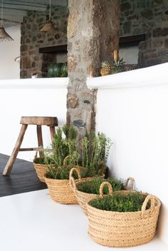 "Baskets as "" canteiros"" in Mykonos , Greece Outdoor Spaces, Outdoor Living, Outdoor Decor, Mykonos Hotels, Sweet Home, Interior And Exterior, Interior Design, Interior Styling, Home And Deco"