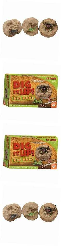 Animals and Nature 31744: Dig It Up! Big Bugs -> BUY IT NOW ONLY: $34.68 on eBay!