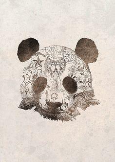Pirates Office  Panda Bear Illustration