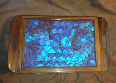Vintage Blue Morpho Butterfly Wing Tray Made In Brazil